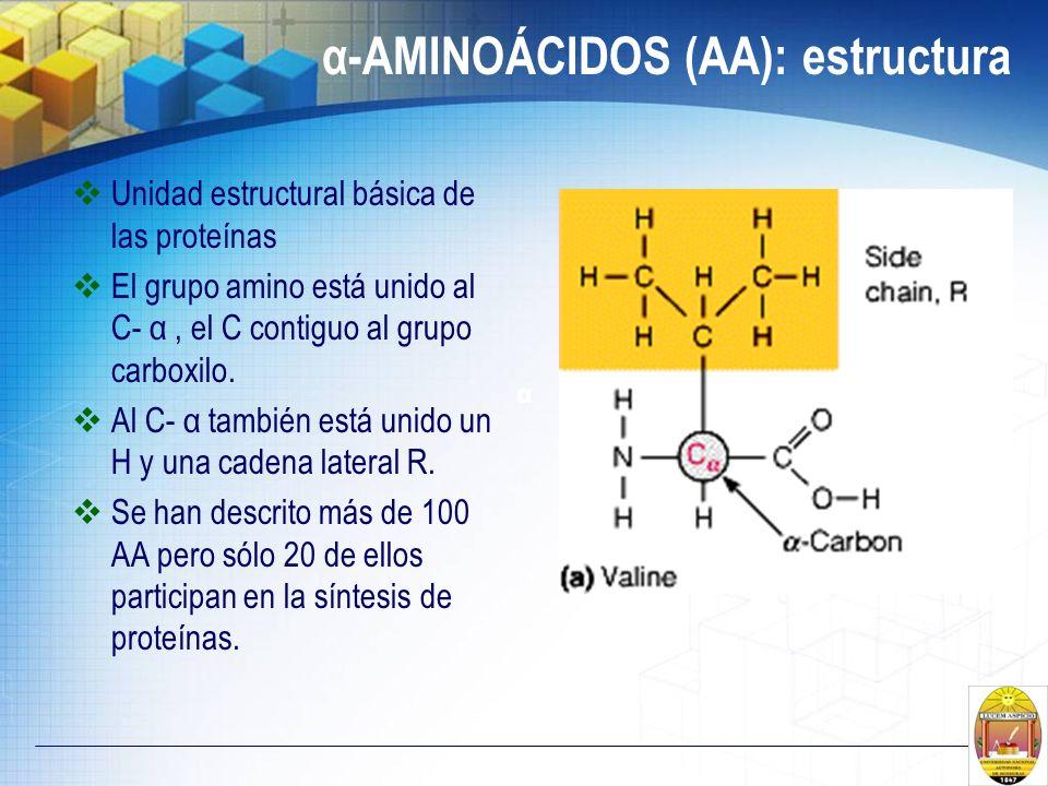 α-AMINOÁCIDOS (AA): estructura