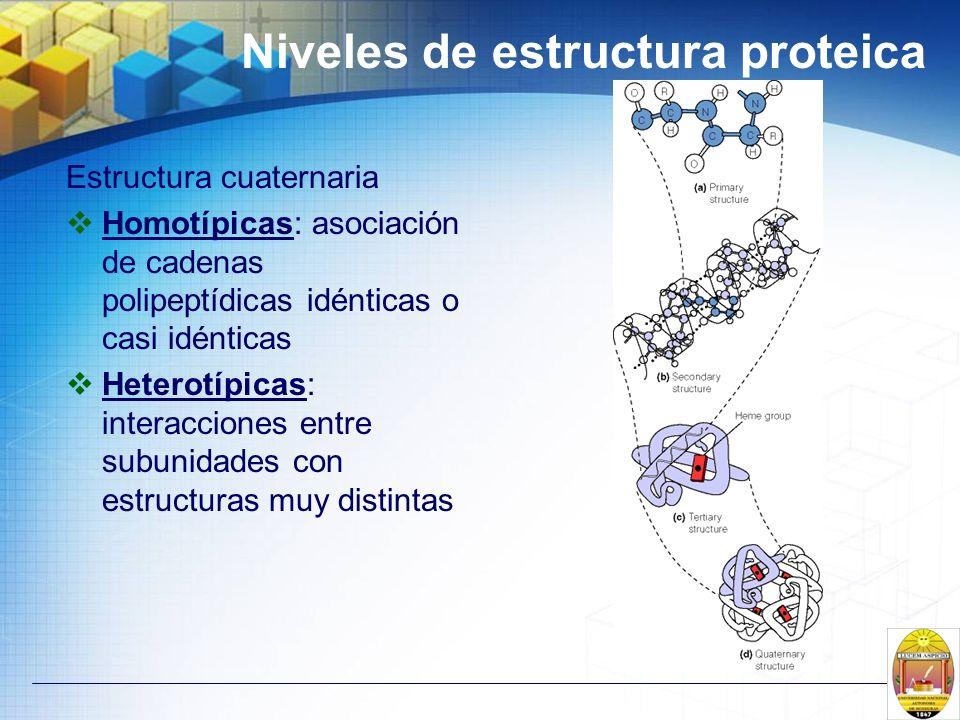 Niveles de estructura proteica