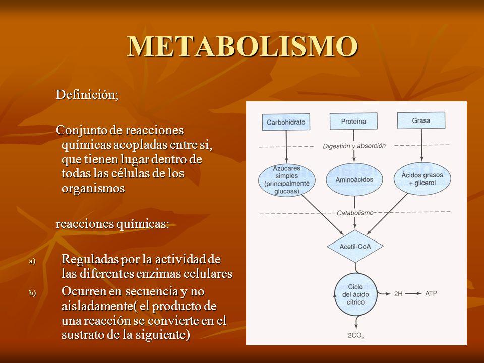 METABOLISMO Definición;