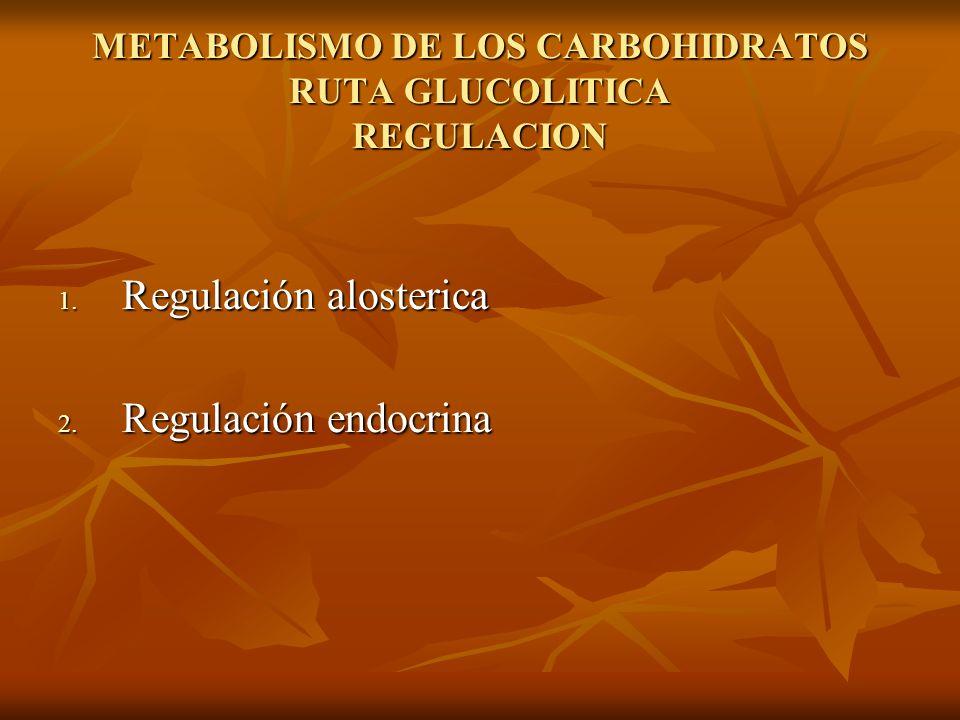 METABOLISMO DE LOS CARBOHIDRATOS RUTA GLUCOLITICA REGULACION