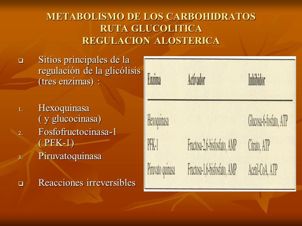 METABOLISMO DE LOS CARBOHIDRATOS RUTA GLUCOLITICA REGULACION ALOSTERICA
