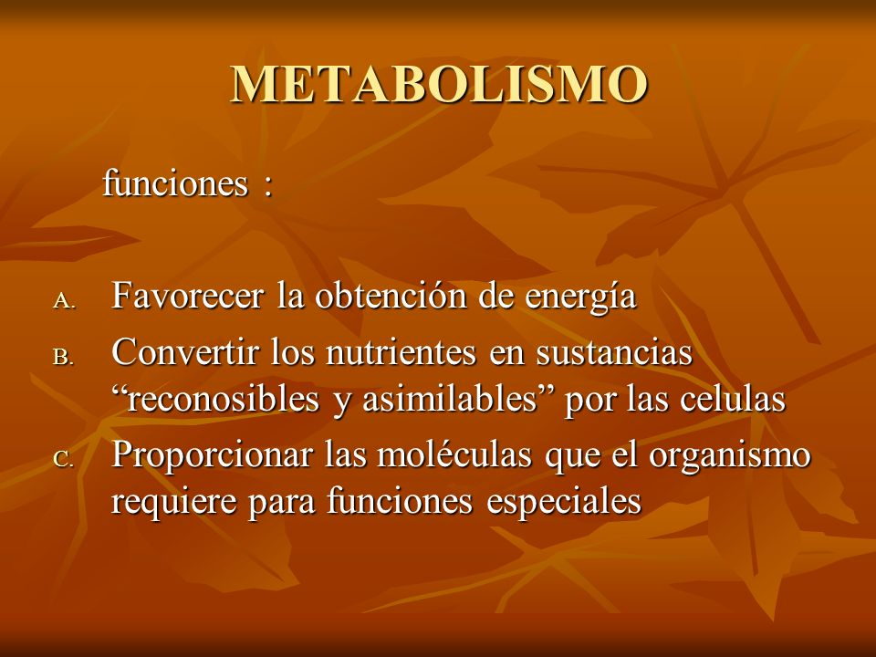 METABOLISMO funciones : Favorecer la obtención de energía