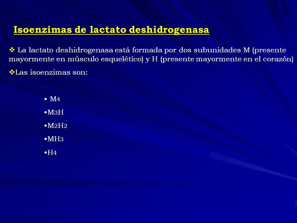Isoenzimas de lactato deshidrogenasa