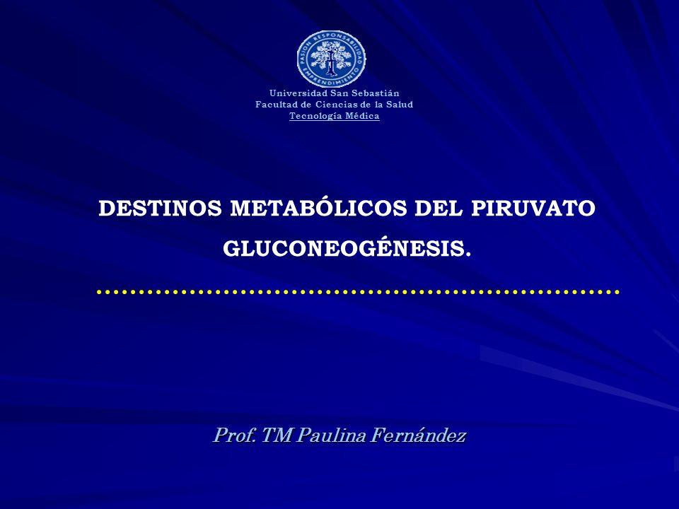 DESTINOS METABÓLICOS DEL PIRUVATO GLUCONEOGÉNESIS.