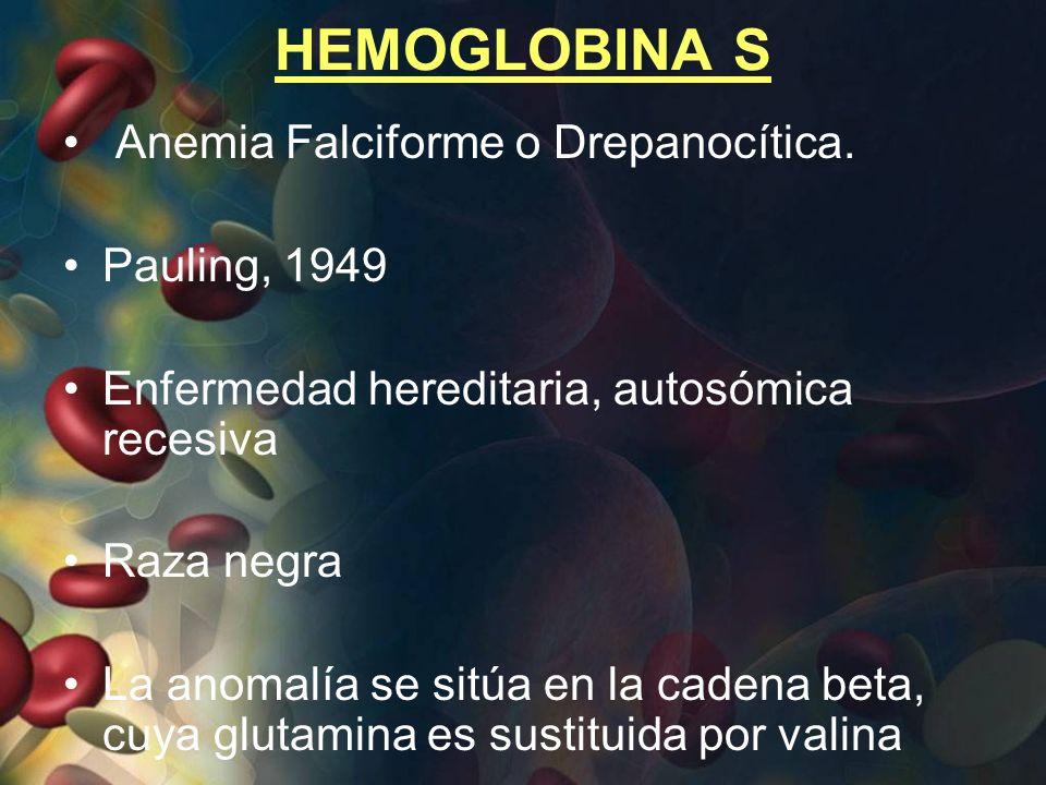 HEMOGLOBINA S Anemia Falciforme o Drepanocítica. Pauling, 1949