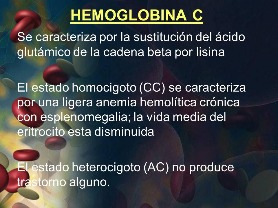 HEMOGLOBINA C Se caracteriza por la sustitución del ácido glutámico de la cadena beta por lisina.