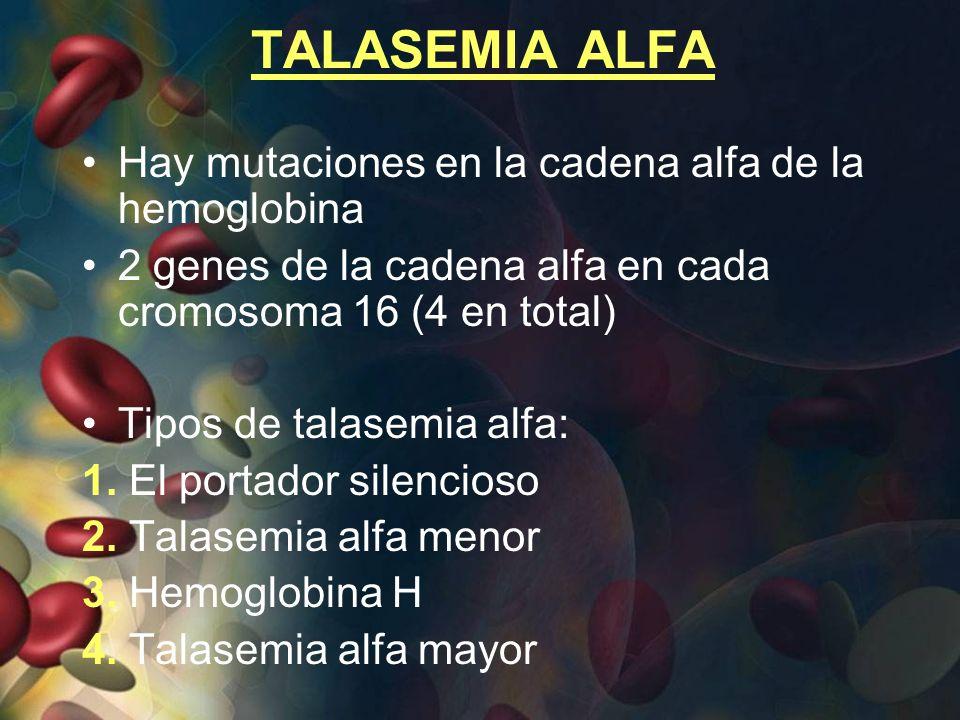 TALASEMIA ALFA Hay mutaciones en la cadena alfa de la hemoglobina