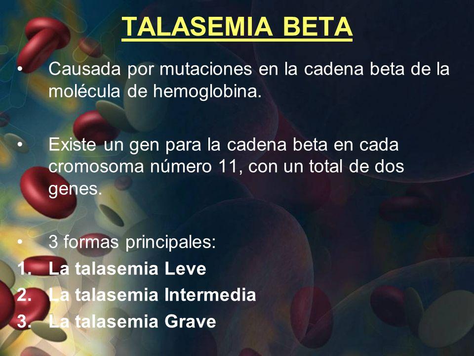 TALASEMIA BETA Causada por mutaciones en la cadena beta de la molécula de hemoglobina.