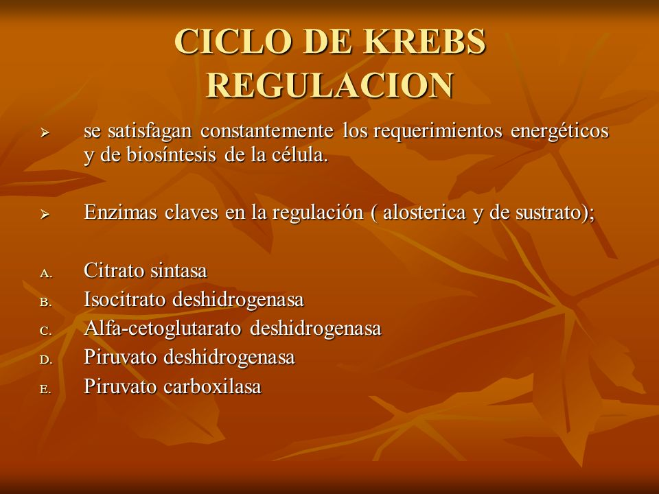 CICLO DE KREBS REGULACION