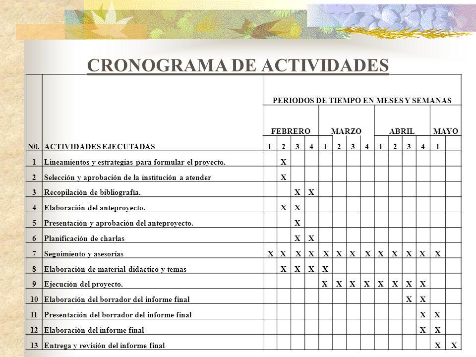CRONOGRAMA DE ACTIVIDADES PERIODOS DE TIEMPO EN MESES Y SEMANAS