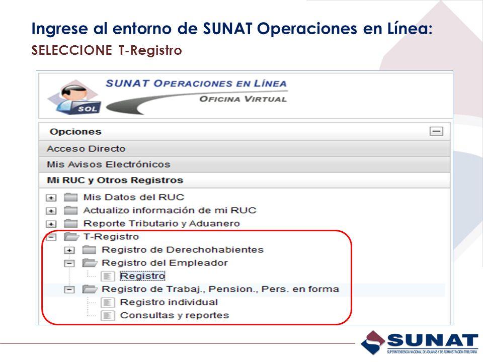 Ingrese al entorno de SUNAT Operaciones en Línea: