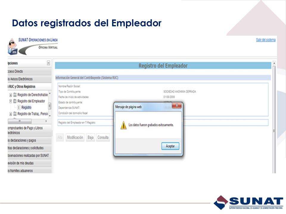 Datos registrados del Empleador