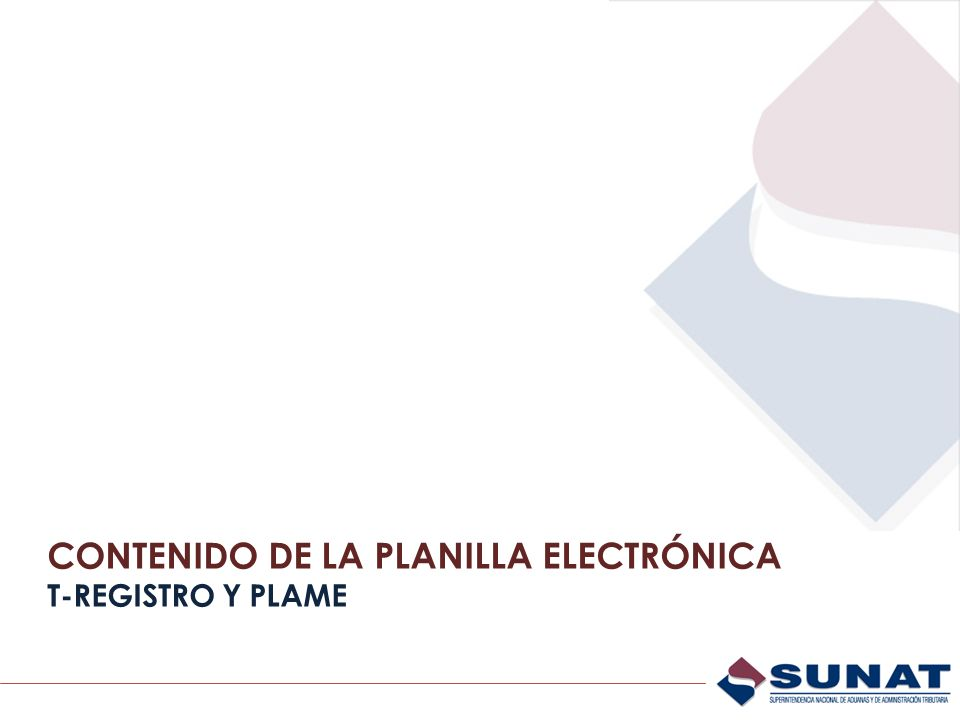 CONTENIDO DE LA PLANILLA ELECTRÓNICA T-REGISTRO Y PLAME