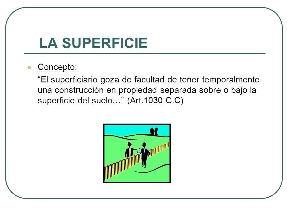 LA SUPERFICIE Concepto: