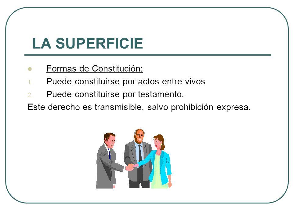 LA SUPERFICIE Formas de Constitución: