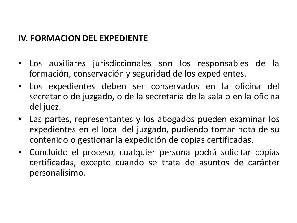 IV. FORMACION DEL EXPEDIENTE