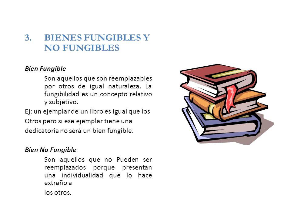 BIENES FUNGIBLES Y NO FUNGIBLES