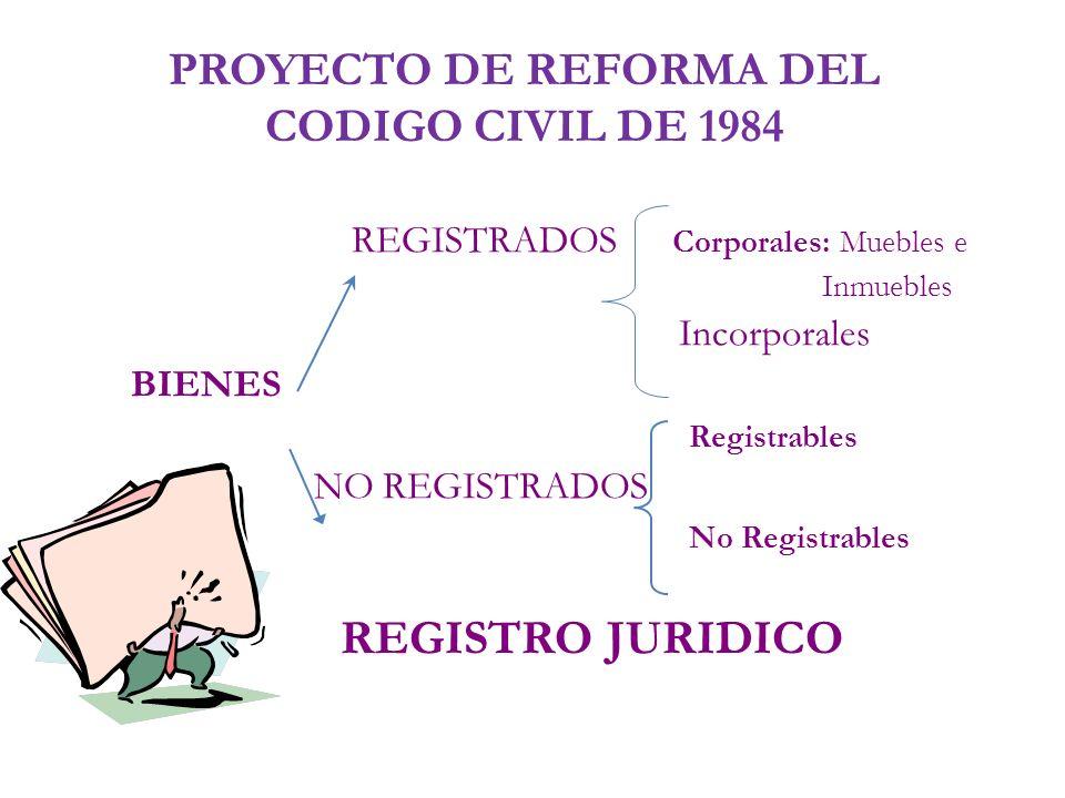 PROYECTO DE REFORMA DEL CODIGO CIVIL DE 1984