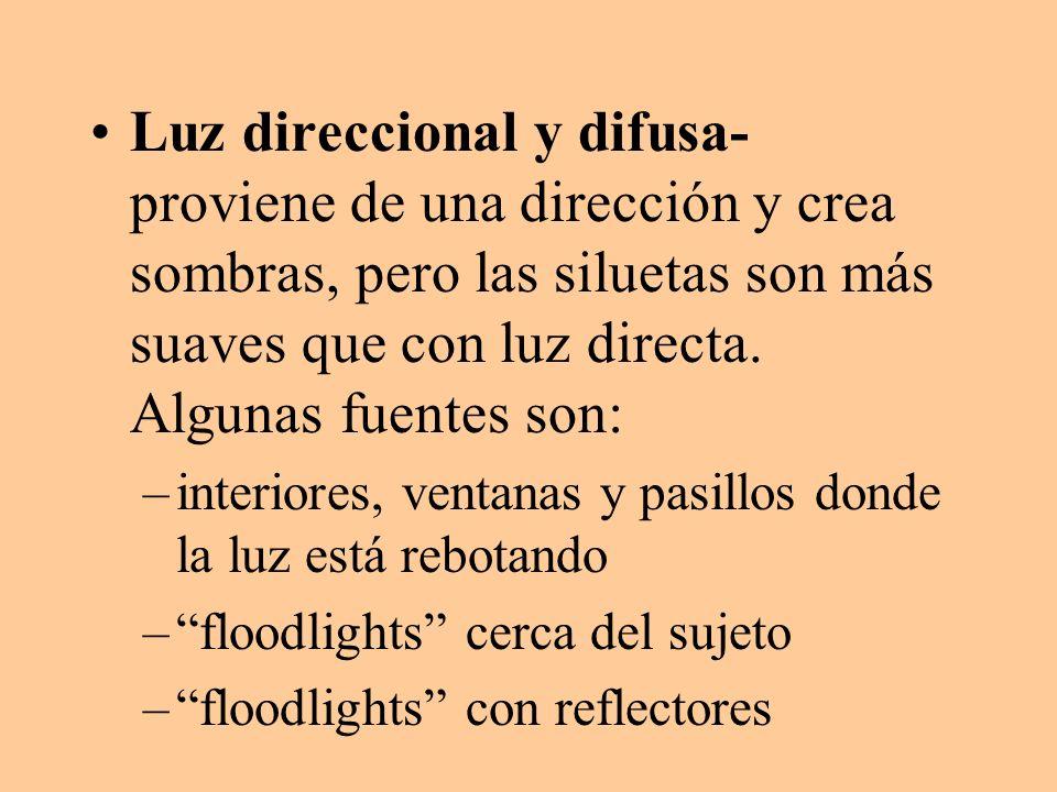 Luz direccional y difusa- proviene de una dirección y crea sombras, pero las siluetas son más suaves que con luz directa. Algunas fuentes son: