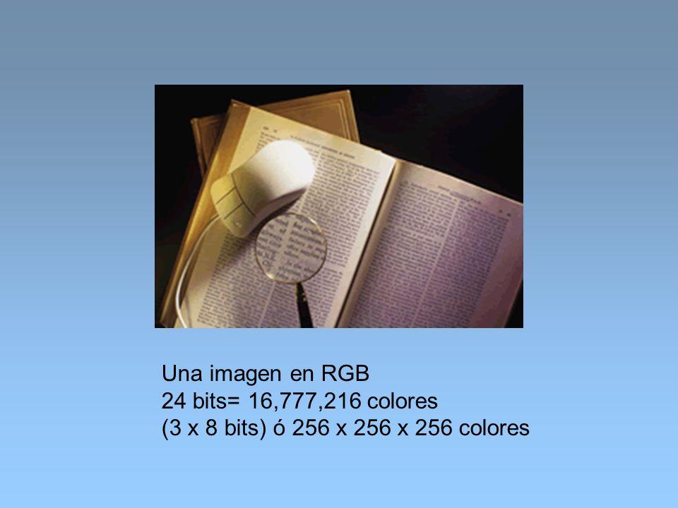 Una imagen en RGB 24 bits= 16,777,216 colores (3 x 8 bits) ó 256 x 256 x 256 colores