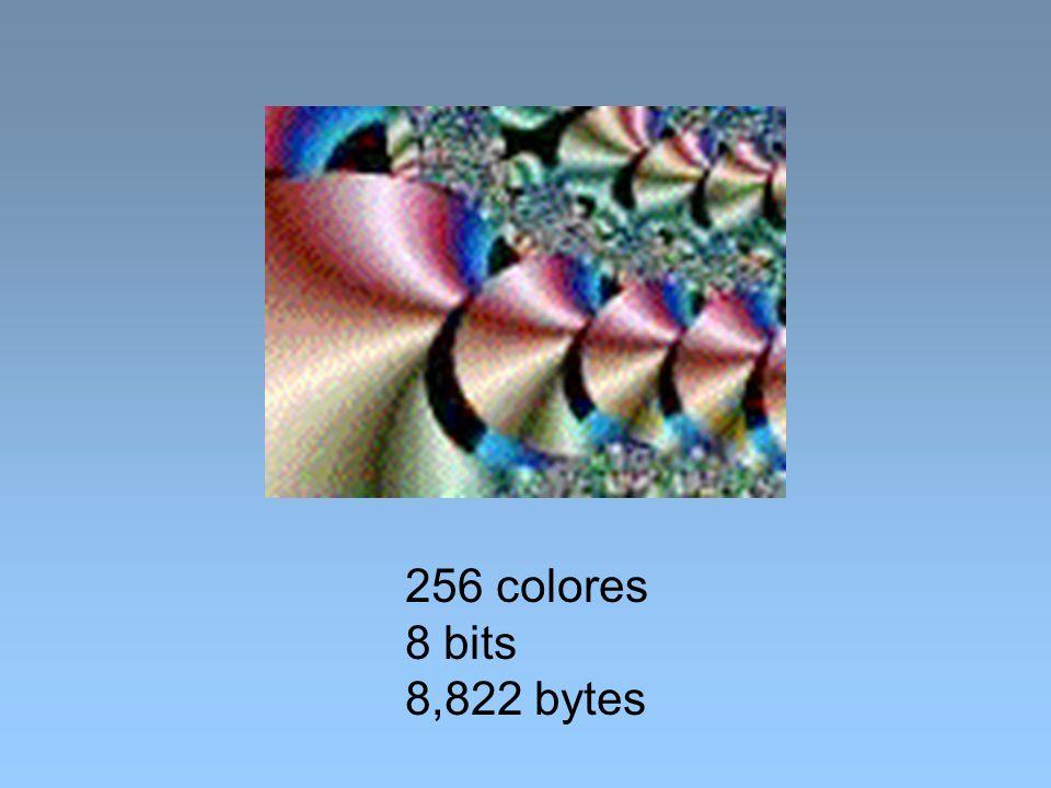 256 colores 8 bits 8,822 bytes