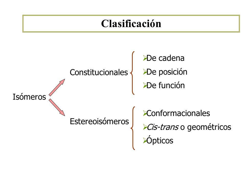 Clasificación De cadena De posición De función Constitucionales