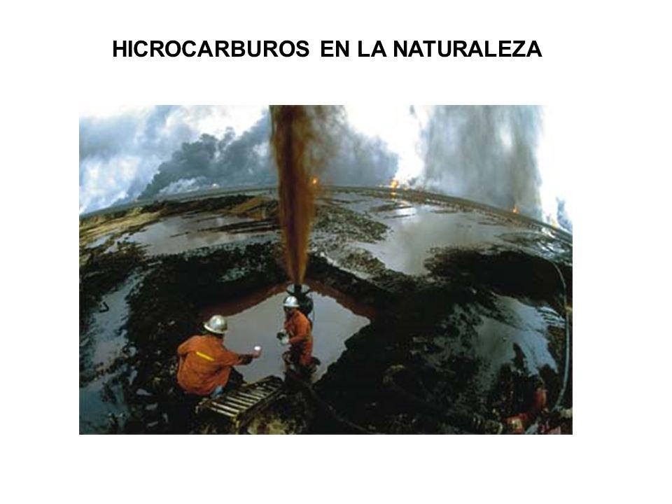 HICROCARBUROS EN LA NATURALEZA
