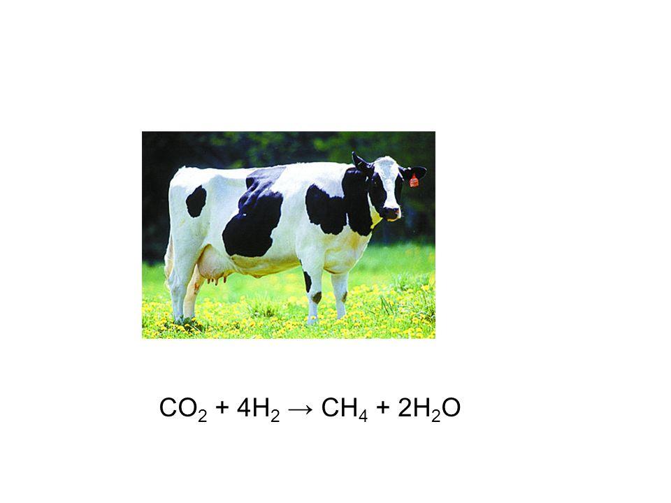 CO2 + 4H2 → CH4 + 2H2O