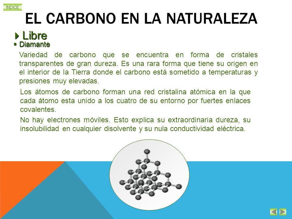 El carbono en la naturaleza