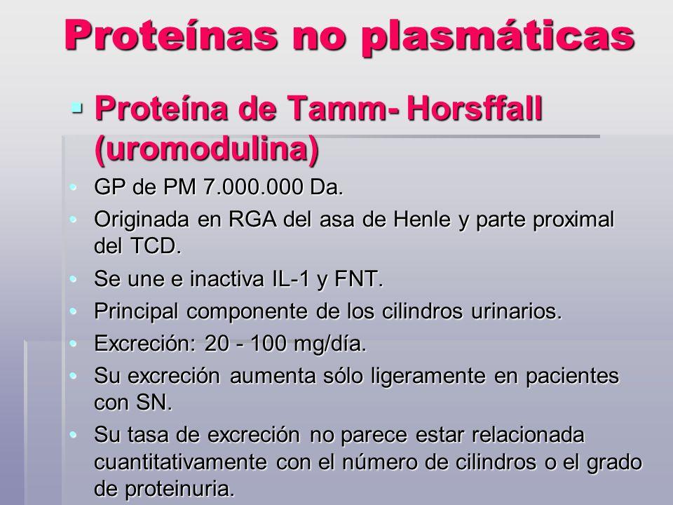 Proteínas no plasmáticas