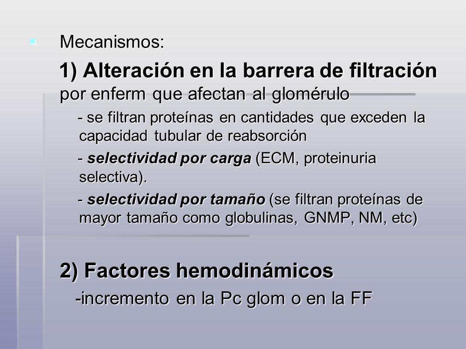 2) Factores hemodinámicos