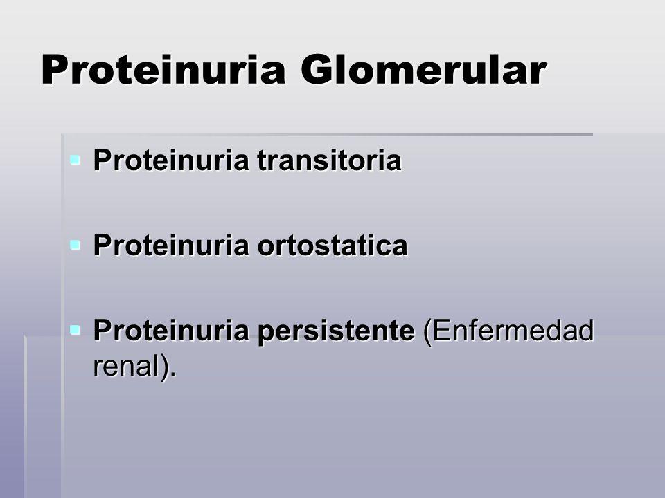 Proteinuria Glomerular