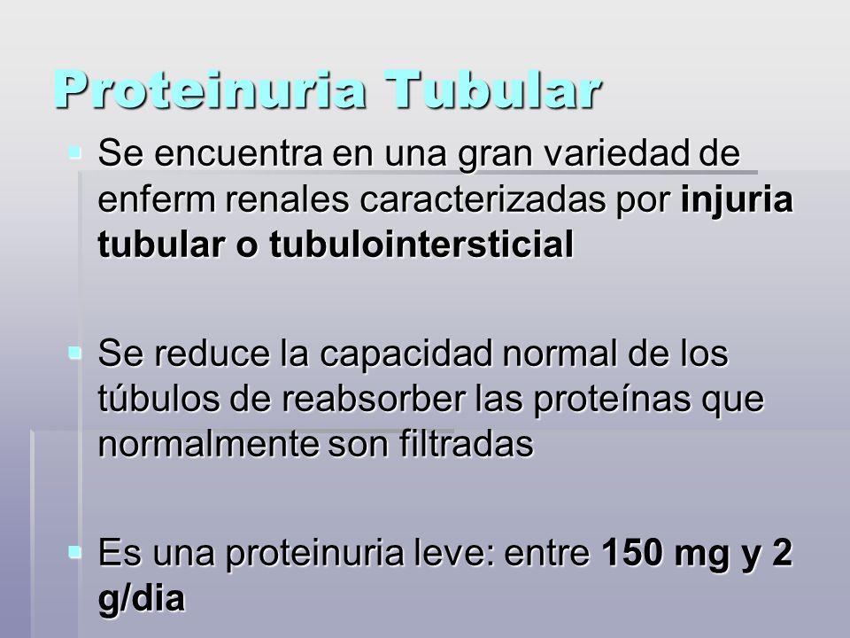 Proteinuria Tubular Se encuentra en una gran variedad de enferm renales caracterizadas por injuria tubular o tubulointersticial.