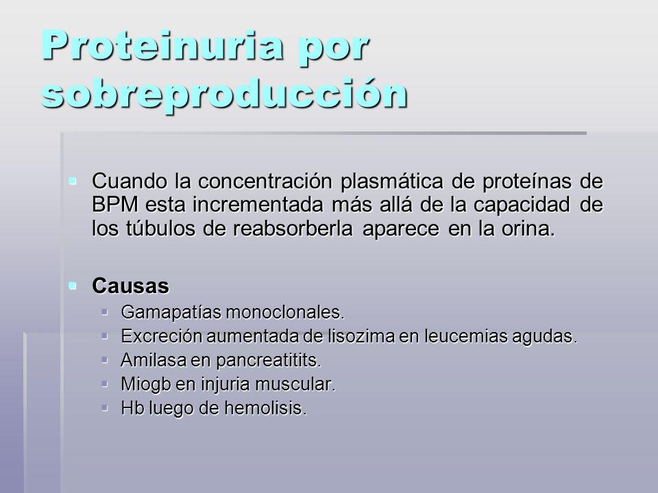 Proteinuria por sobreproducción