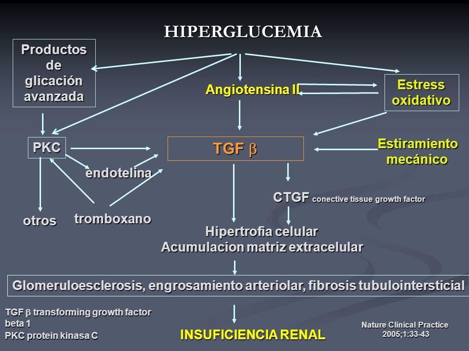HIPERGLUCEMIA TGF  Productos de glicación avanzada Estress oxidativo