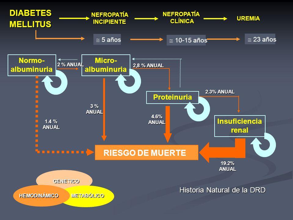 RIESGO DE MUERTE DIABETES MELLITUS Normo- albuminuria Micro-