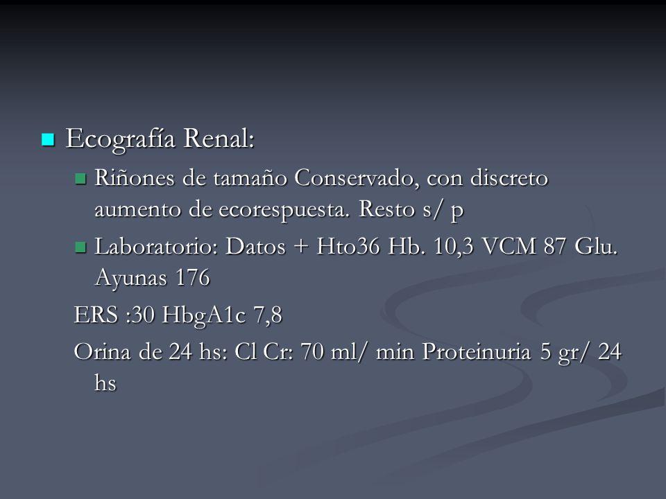 Ecografía Renal: Riñones de tamaño Conservado, con discreto aumento de ecorespuesta. Resto s/ p.