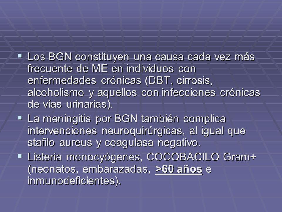 Los BGN constituyen una causa cada vez más frecuente de ME en individuos con enfermedades crónicas (DBT, cirrosis, alcoholismo y aquellos con infecciones crónicas de vías urinarias).
