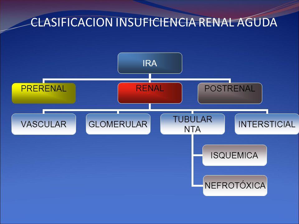 CLASIFICACION INSUFICIENCIA RENAL AGUDA