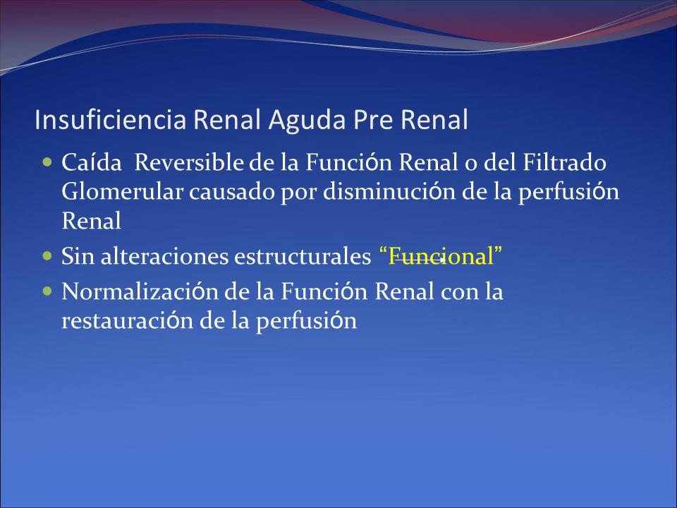 Insuficiencia Renal Aguda Pre Renal