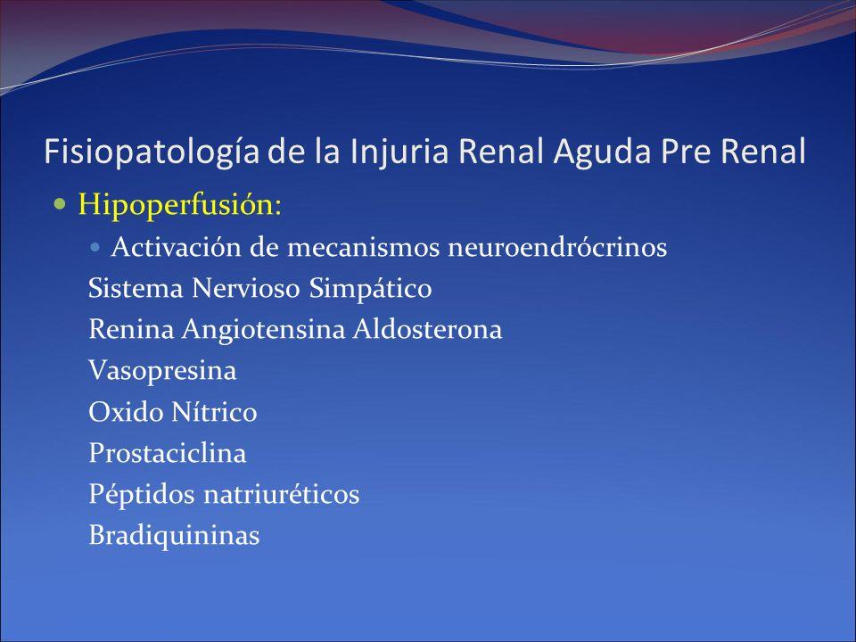 Fisiopatología de la Injuria Renal Aguda Pre Renal