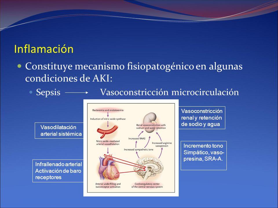 Inflamación Constituye mecanismo fisiopatogénico en algunas condiciones de AKI: Sepsis Vasoconstricción microcirculación.
