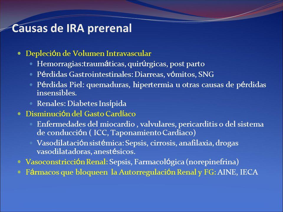 Causas de IRA prerenal Depleción de Volumen Intravascular