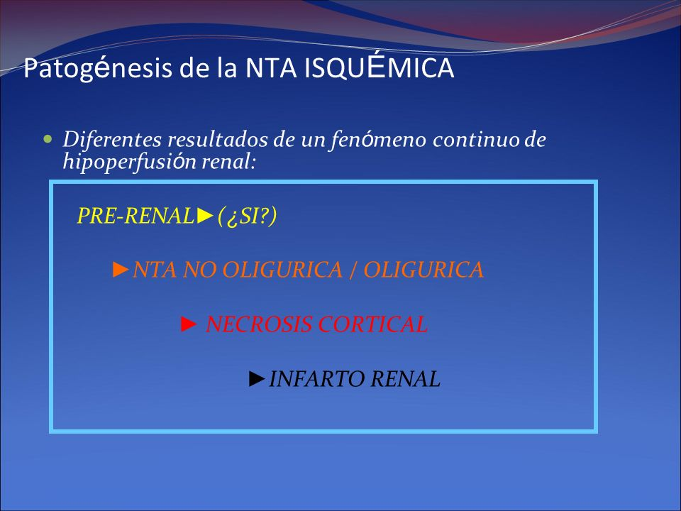 Patogénesis de la NTA ISQUÉMICA