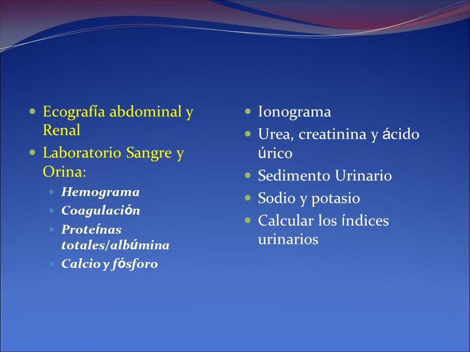 Ecografía abdominal y Renal Laboratorio Sangre y Orina: Ionograma