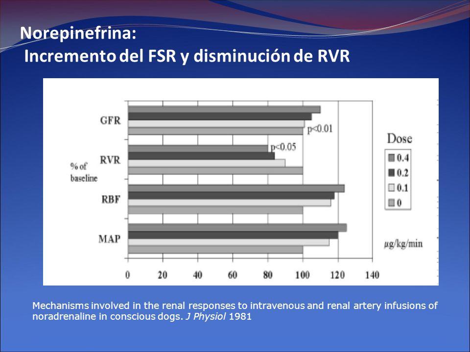 Norepinefrina: Incremento del FSR y disminución de RVR