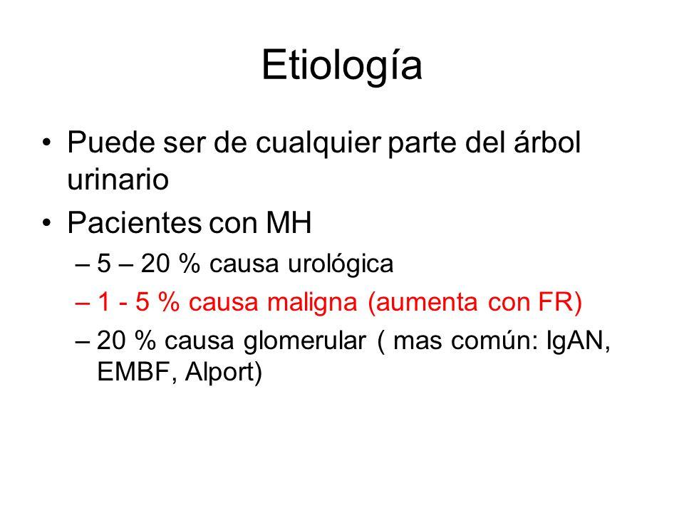 Etiología Puede ser de cualquier parte del árbol urinario