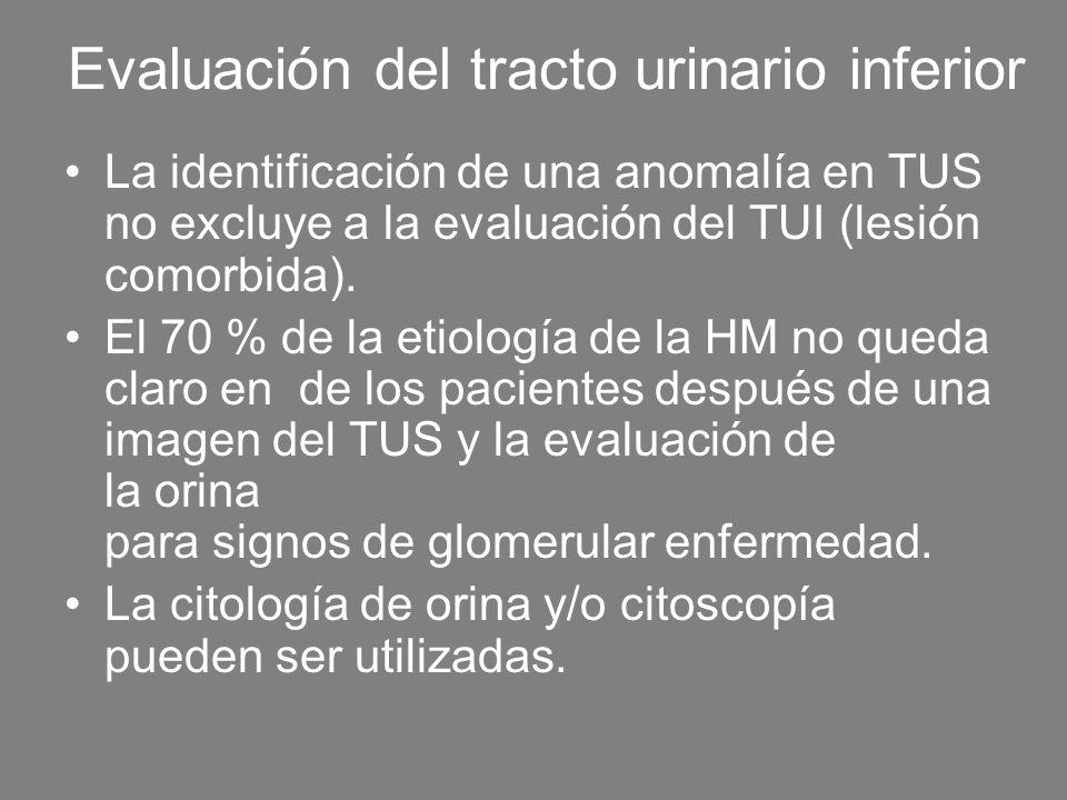 Evaluación del tracto urinario inferior