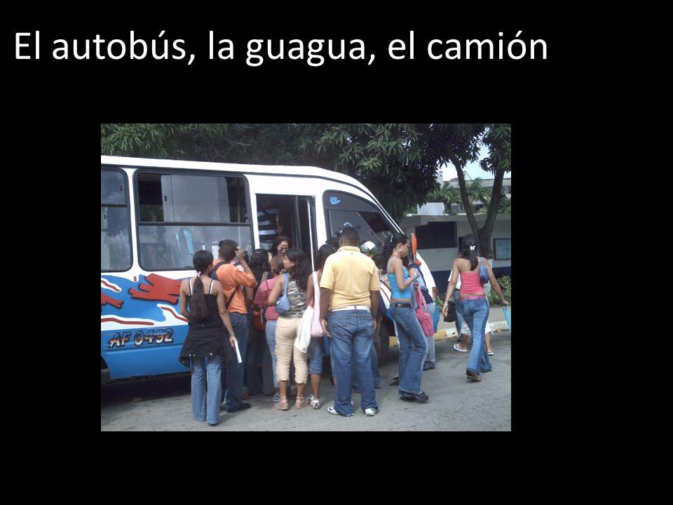 El autobús, la guagua, el camión