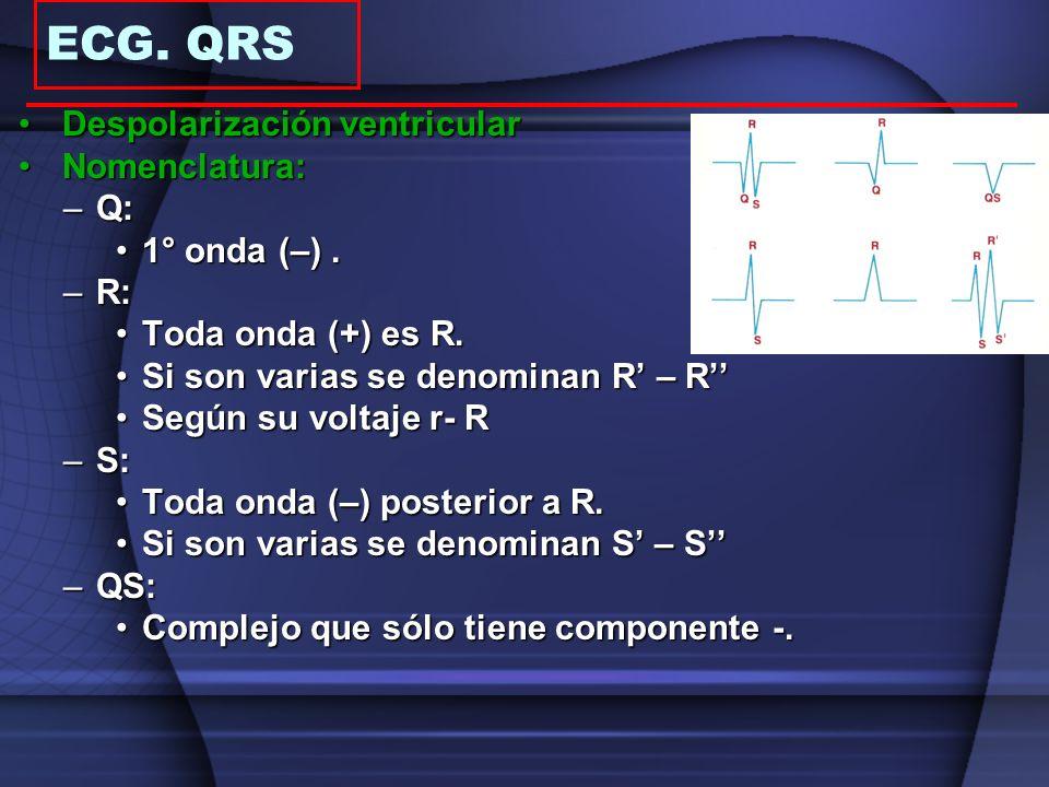 ECG. QRS Despolarización ventricular Nomenclatura: Q: 1° onda (–) . R: